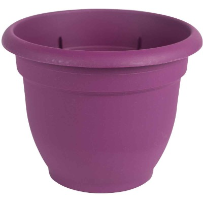 Bloem Ariana 17 In. H. x 20 In. Dia. Plastic Self Watering Passion Fruit Planter