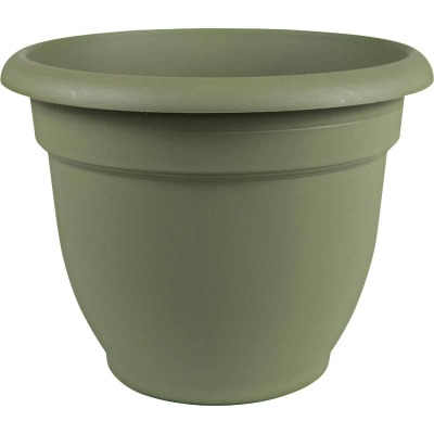 Bloem Ariana 6.5 In. H. x 6 In. Dia. Plastic Self Watering Thyme Green Planter