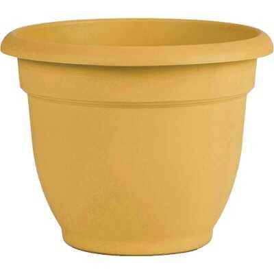 Bloem Ariana 6.5 In. H. x 6 In. Dia. Plastic Self Watering Earthy Yellow Planter