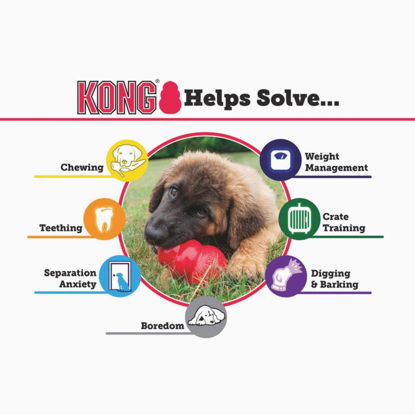 Kong Classic Dog Chew Toy, Up to 20 Lb. Image 4