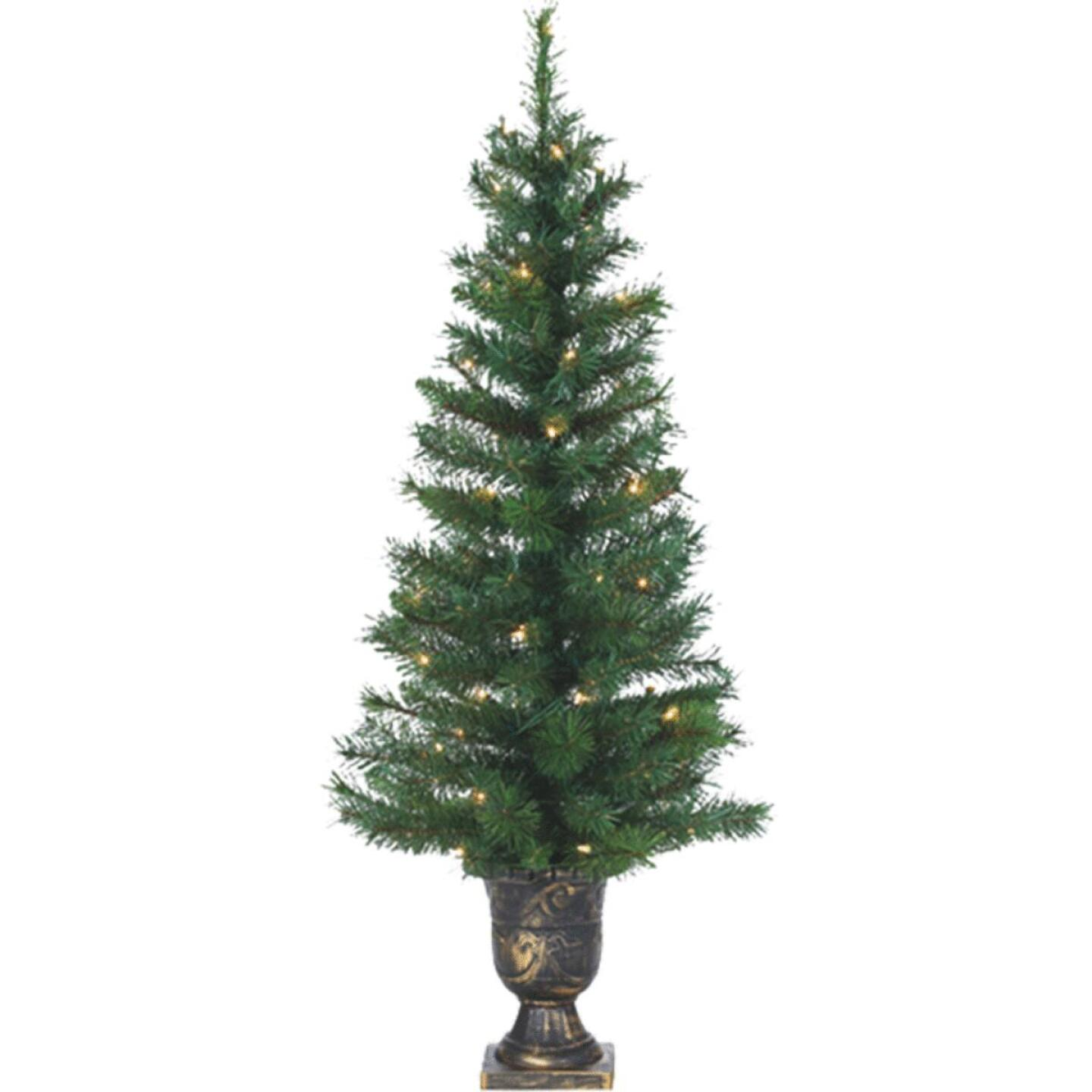 Sterling 4 Ft. Potted Idaho Pine 50-Bulb Clear Incandescent Prelit Artificial Christmas Tree Image 1
